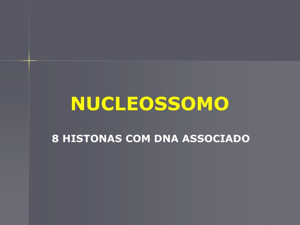 8 HISTONAS COM DNA ASSOCIADO