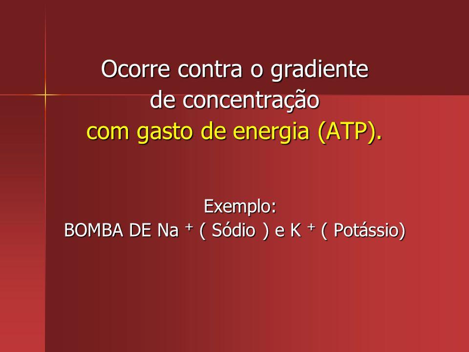 Ocorre contra o gradiente de concentração com gasto de energia (ATP).