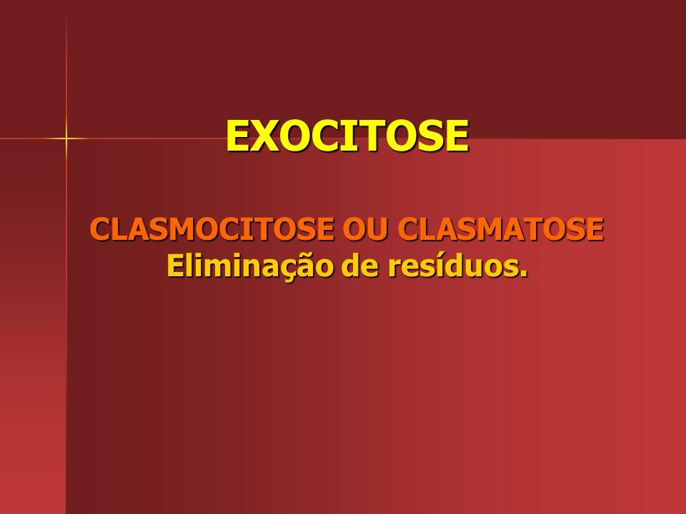 EXOCITOSE CLASMOCITOSE OU CLASMATOSE Eliminação de resíduos.