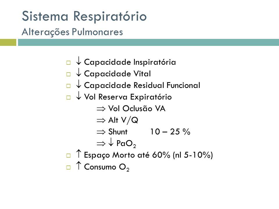 Sistema Respiratório Alterações Pulmonares
