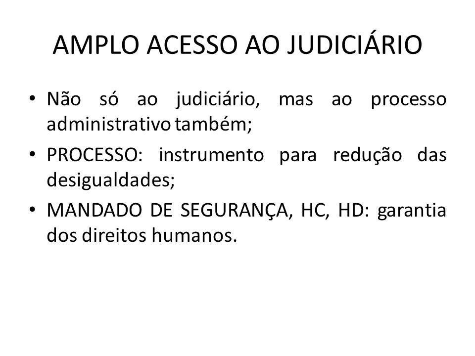 AMPLO ACESSO AO JUDICIÁRIO