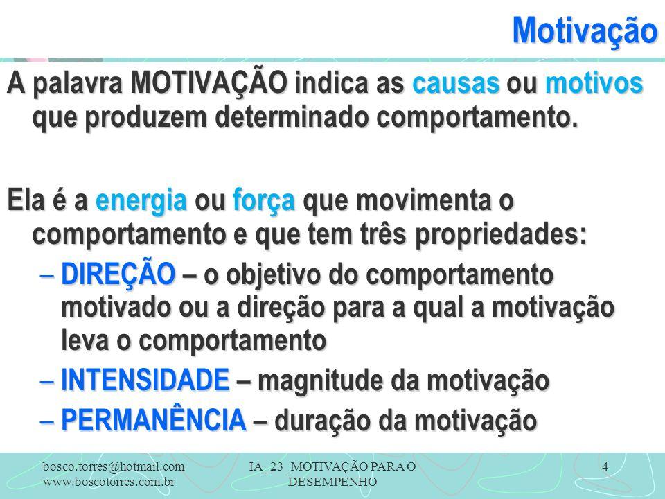 IA_23_MOTIVAÇÃO PARA O DESEMPENHO