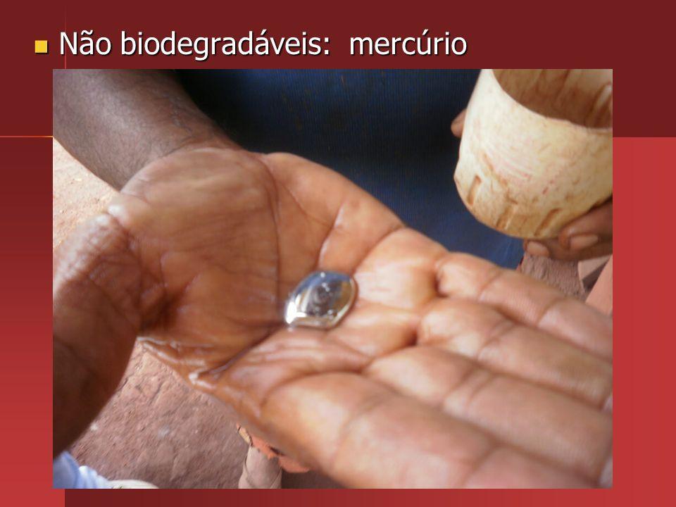 Não biodegradáveis: mercúrio