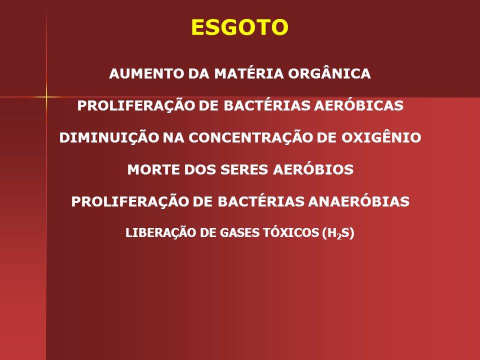ESGOTO AUMENTO DA MATÉRIA ORGÂNICA PROLIFERAÇÃO DE BACTÉRIAS AERÓBICAS