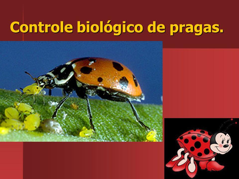 Controle biológico de pragas.