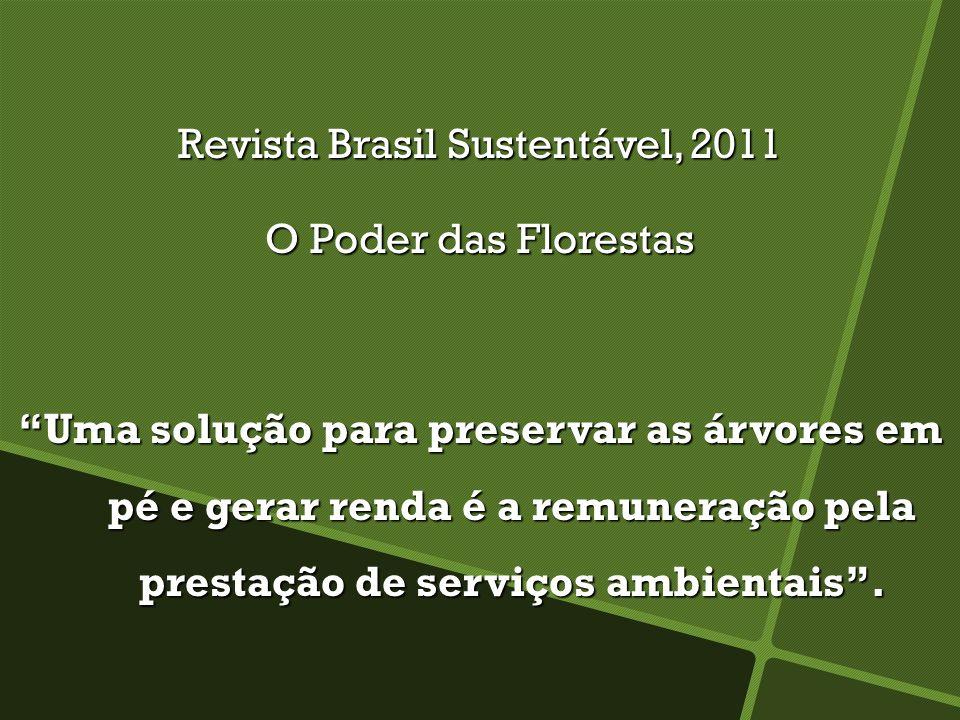 Revista Brasil Sustentável, 2011