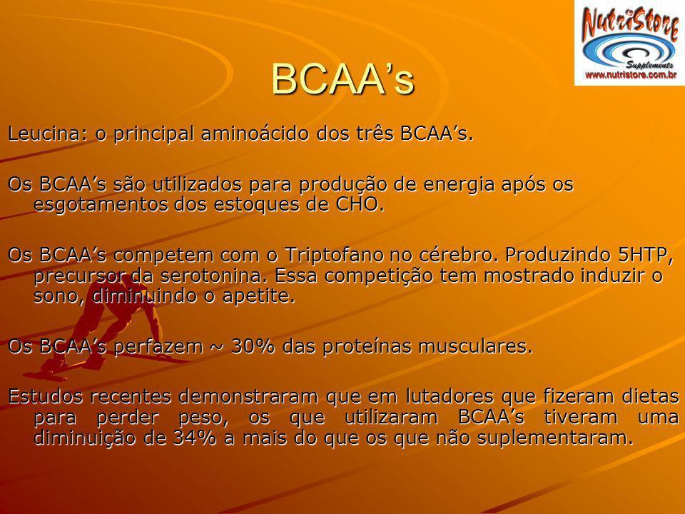 BCAA's Leucina: o principal aminoácido dos três BCAA's.