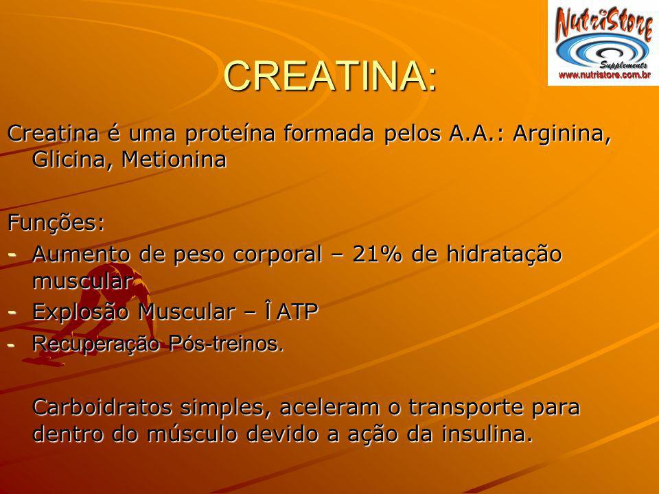CREATINA: Creatina é uma proteína formada pelos A.A.: Arginina, Glicina, Metionina. Funções: Aumento de peso corporal – 21% de hidratação muscular.