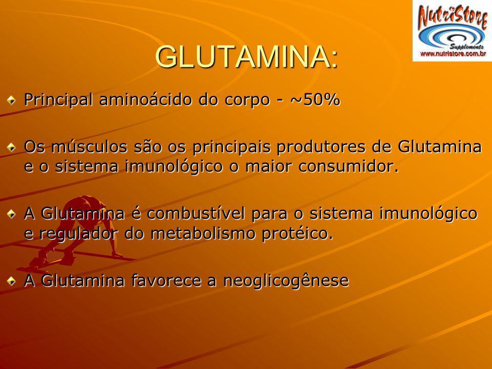 GLUTAMINA: Principal aminoácido do corpo - ~50%