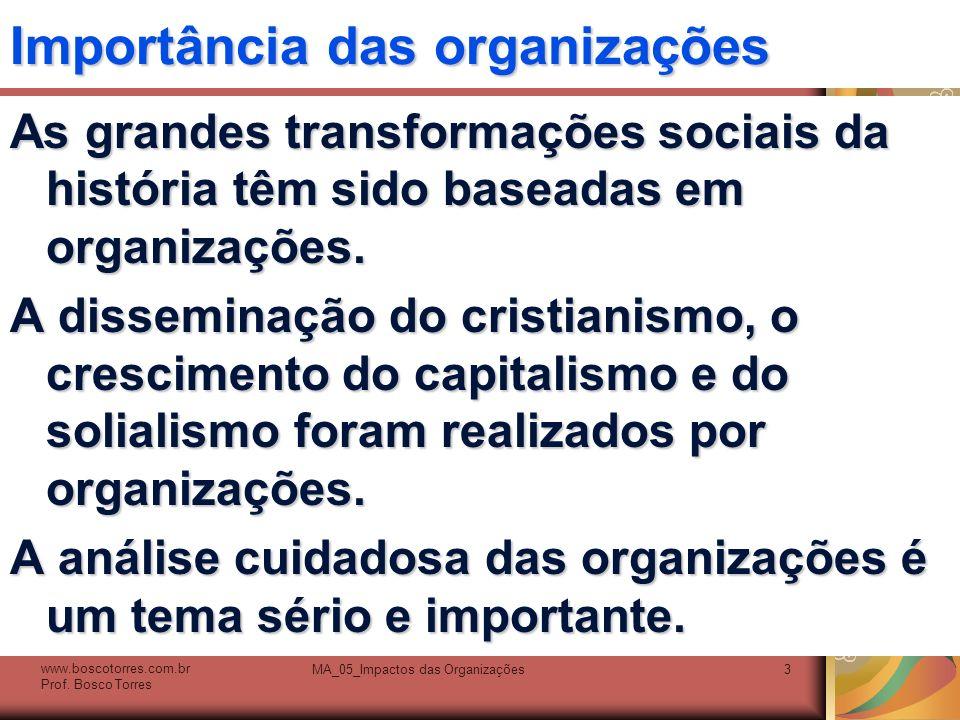 Importância das organizações