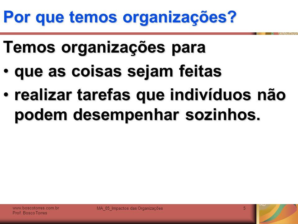 Por que temos organizações