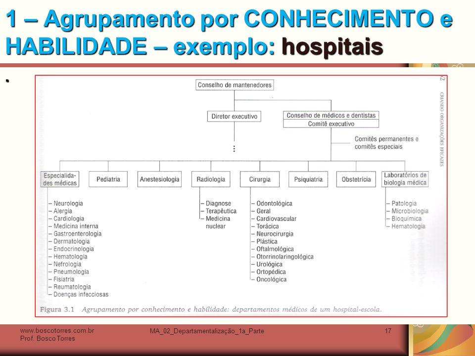 1 – Agrupamento por CONHECIMENTO e HABILIDADE – exemplo: hospitais