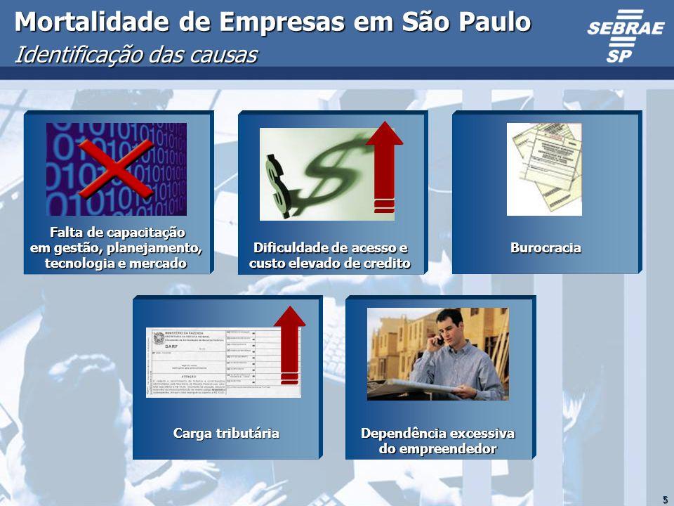 Mortalidade de Empresas em São Paulo Identificação das causas