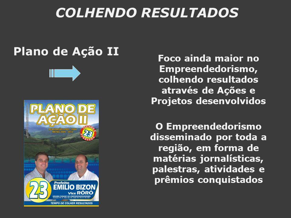 COLHENDO RESULTADOS Plano de Ação II