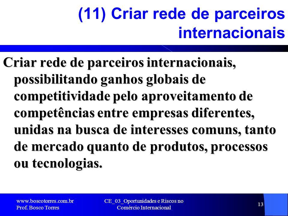 (11) Criar rede de parceiros internacionais