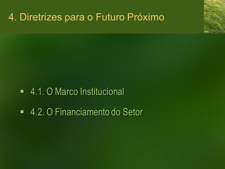 4. Diretrizes para o Futuro Próximo