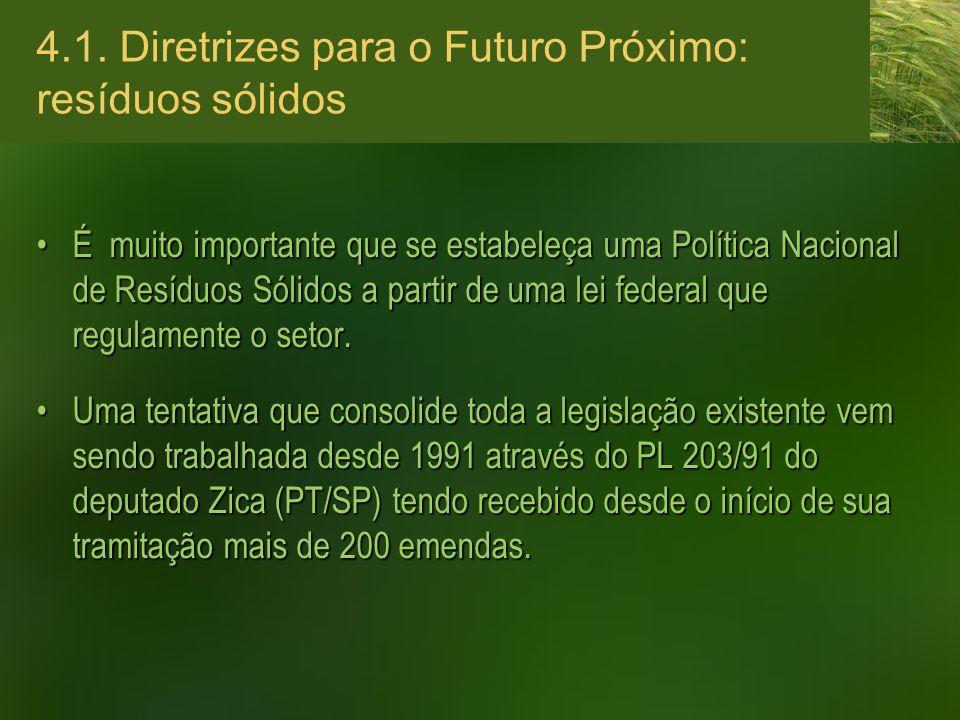 4.1. Diretrizes para o Futuro Próximo: resíduos sólidos