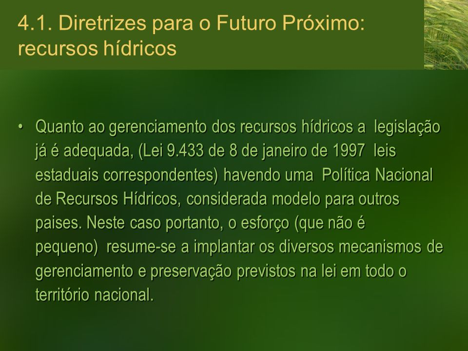4.1. Diretrizes para o Futuro Próximo: recursos hídricos