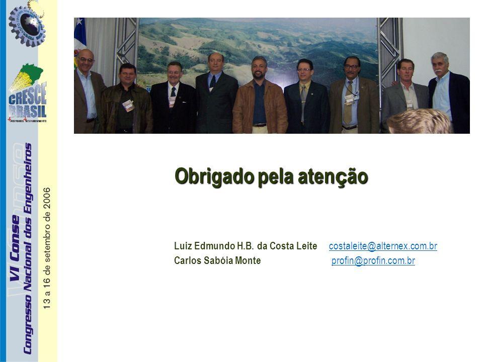 Obrigado pela atenção Luiz Edmundo H.B. da Costa Leite costaleite@alternex.com.br.