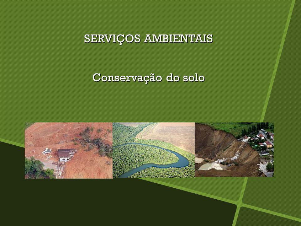 SERVIÇOS AMBIENTAIS Conservação do solo