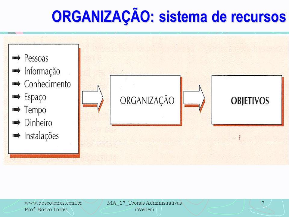 ORGANIZAÇÃO: sistema de recursos