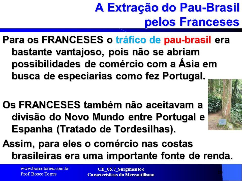 A Extração do Pau-Brasil pelos Franceses