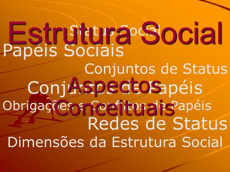 Dimensões da Estrutura Social