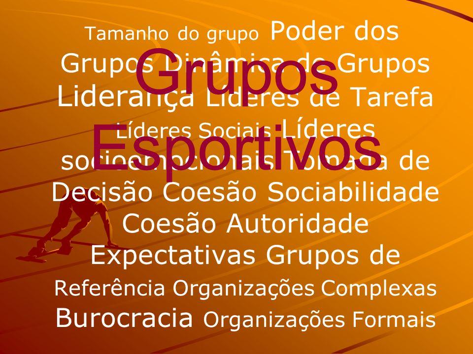 Tamanho do grupo Poder dos Grupos Dinâmica de Grupos Liderança Líderes de Tarefa Líderes Sociais Líderes socioemocionais Tomada de Decisão Coesão Sociabilidade Coesão Autoridade Expectativas Grupos de Referência Organizações Complexas Burocracia Organizações Formais