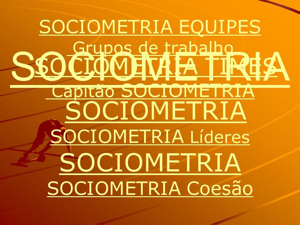 SOCIOMETRIA SOCIOMETRIA SOCIOMETRIA EQUIPES SOCIOMETRIA Líderes