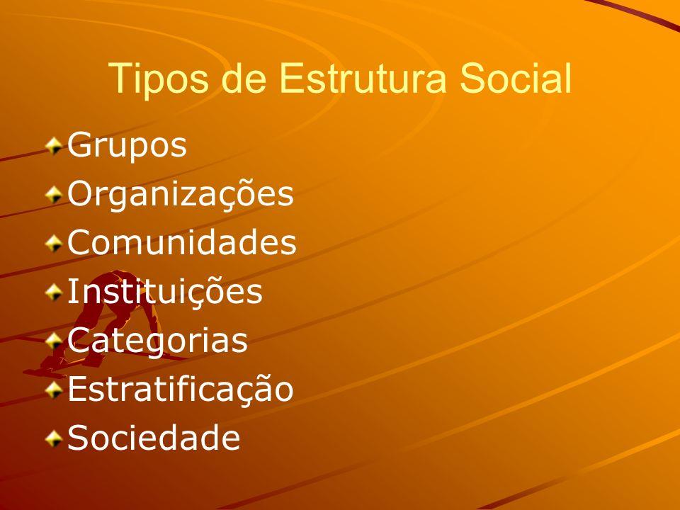 Tipos de Estrutura Social