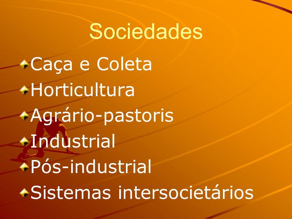 Sociedades Caça e Coleta Horticultura Agrário-pastoris Industrial