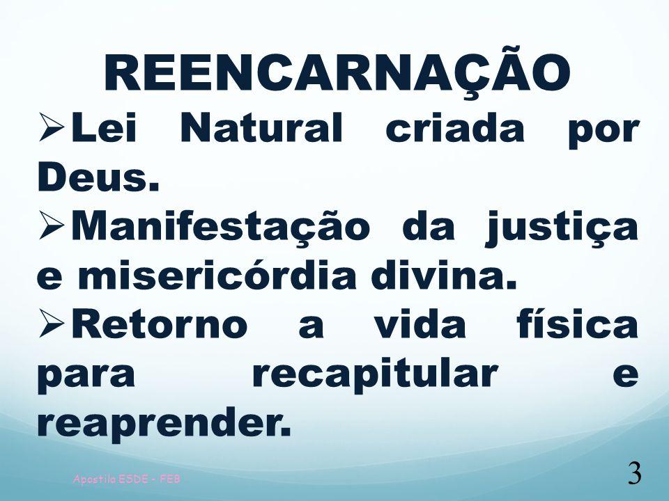 REENCARNAÇÃO Lei Natural criada por Deus.
