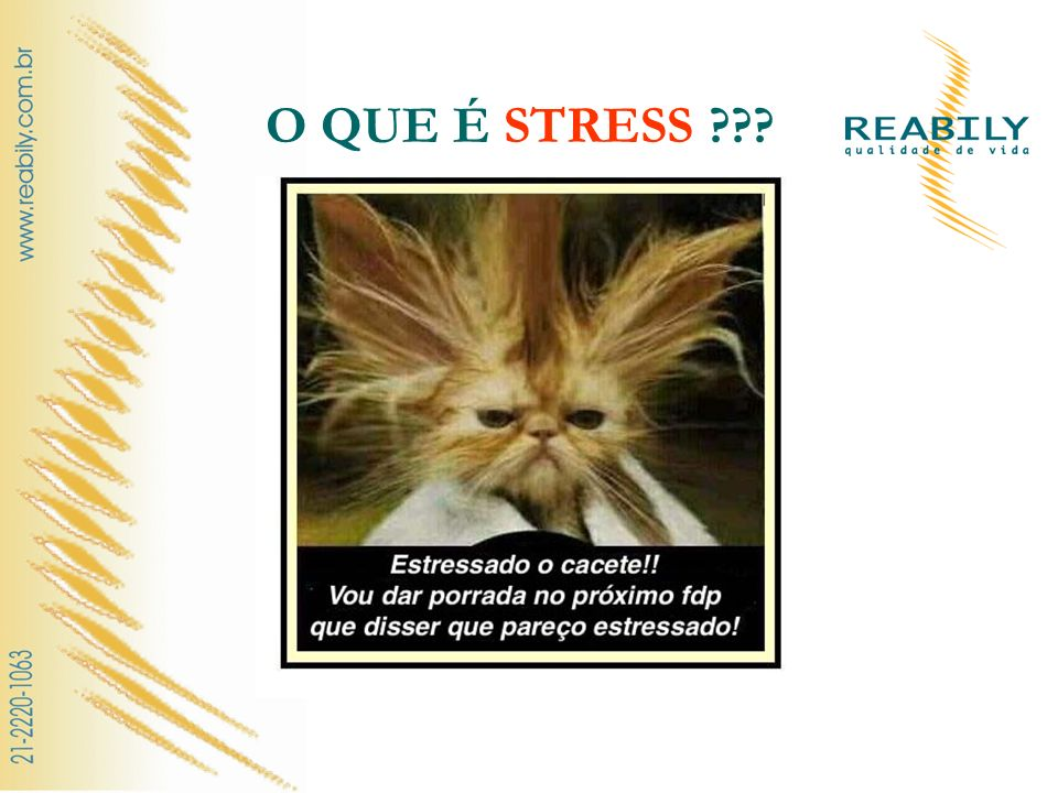 O QUE É STRESS