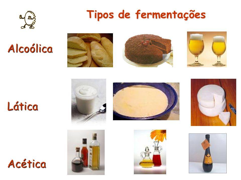 Tipos de fermentações Alcoólica Lática Acética