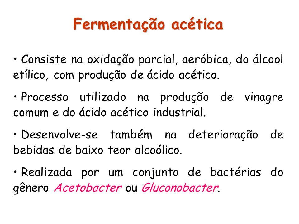 Fermentação acética Consiste na oxidação parcial, aeróbica, do álcool etílico, com produção de ácido acético.