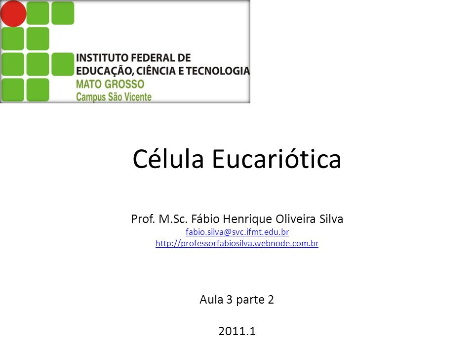 Célula Eucariótica Prof. M. Sc. Fábio Henrique Oliveira Silva fabio