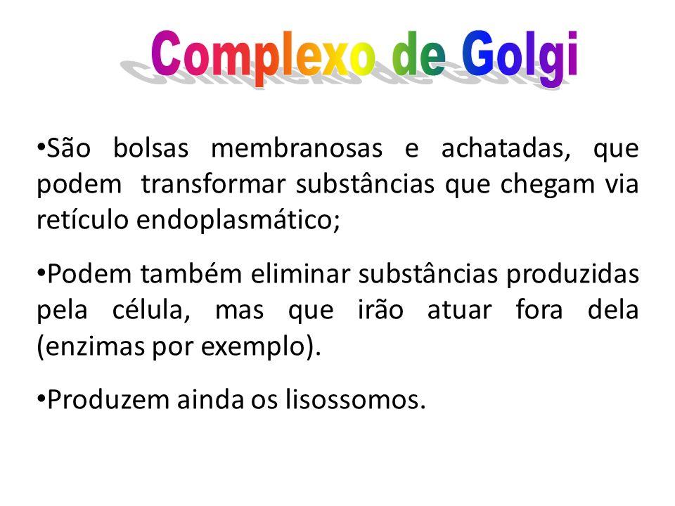 Complexo de Golgi São bolsas membranosas e achatadas, que podem transformar substâncias que chegam via retículo endoplasmático;