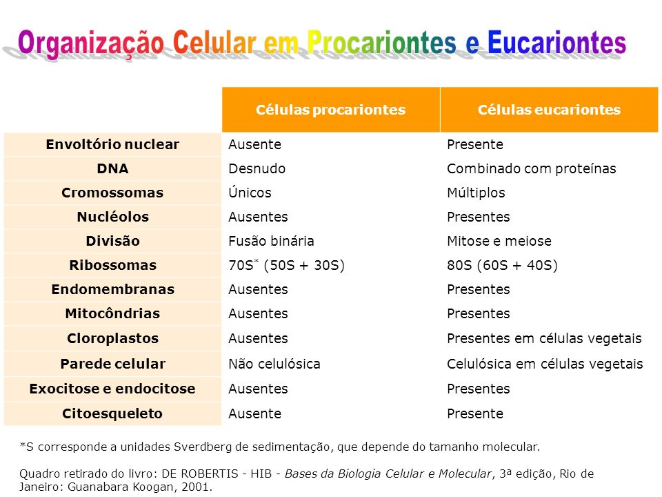 Exocitose e endocitose