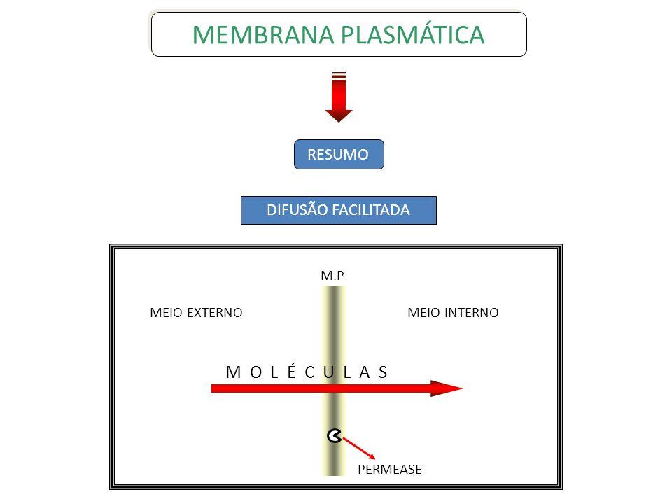 MEMBRANA PLASMÁTICA M O L É C U L A S RESUMO DIFUSÃO FACILITADA M.P