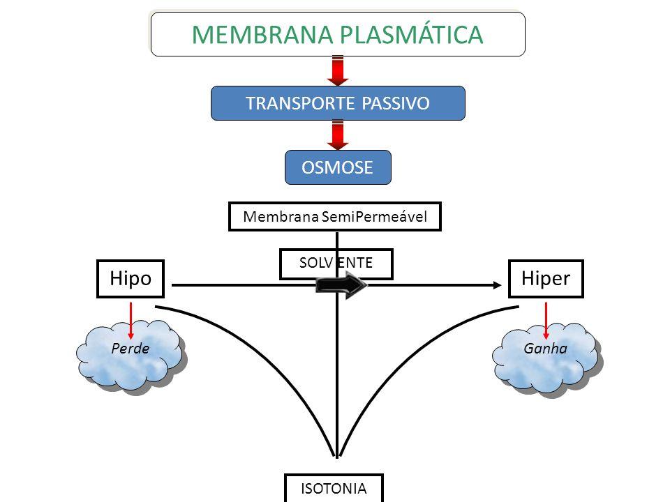 Membrana SemiPermeável