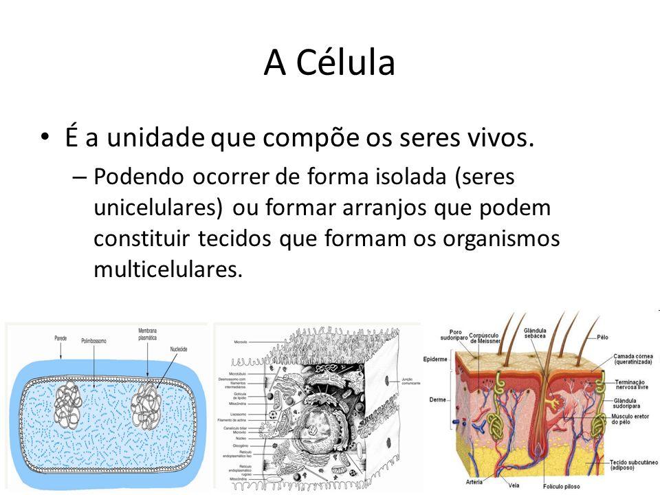 A Célula É a unidade que compõe os seres vivos.