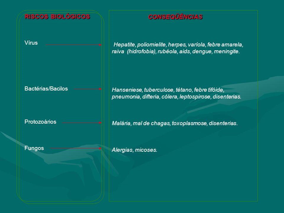 RISCOS BIOLÓGICOS CONSEQÜÊNCIAS