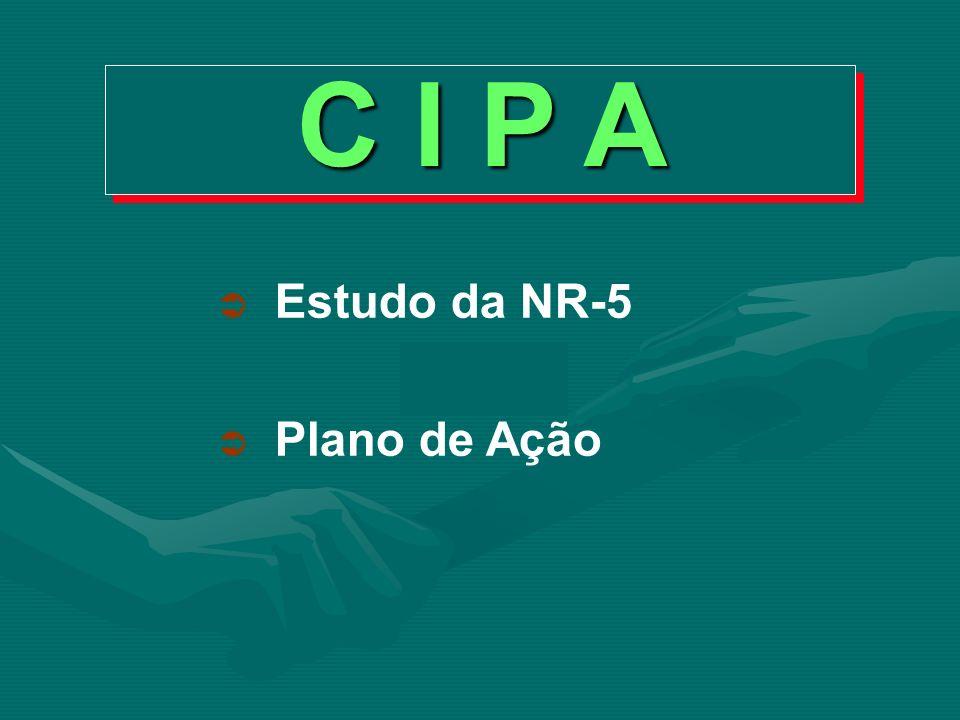 C I P A Estudo da NR-5 Plano de Ação