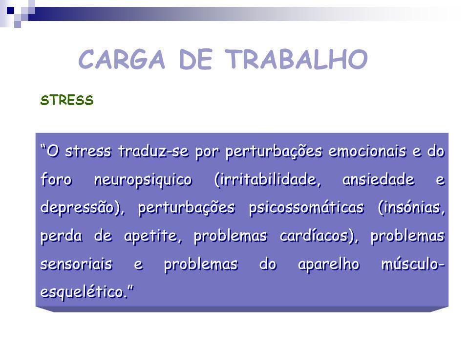 CARGA DE TRABALHO STRESS.