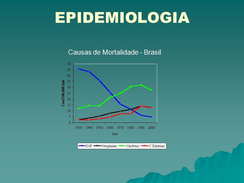 EPIDEMIOLOGIA Causas de Mortalidade - Brasil