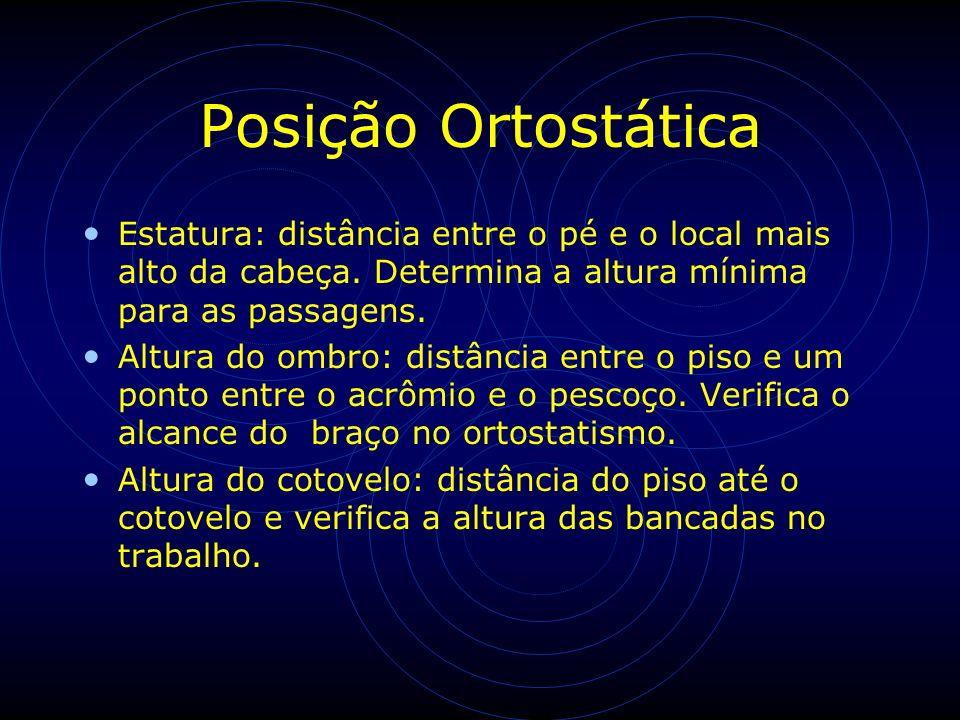Posição Ortostática Estatura: distância entre o pé e o local mais alto da cabeça. Determina a altura mínima para as passagens.