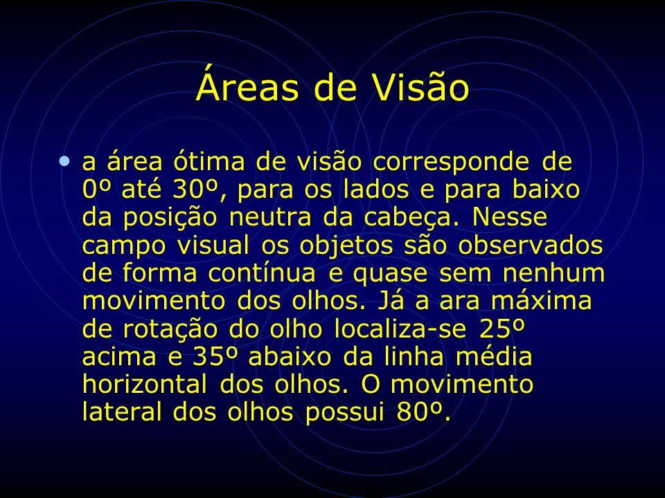 Áreas de Visão