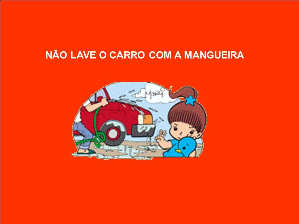 NÃO LAVE O CARRO COM A MANGUEIRA