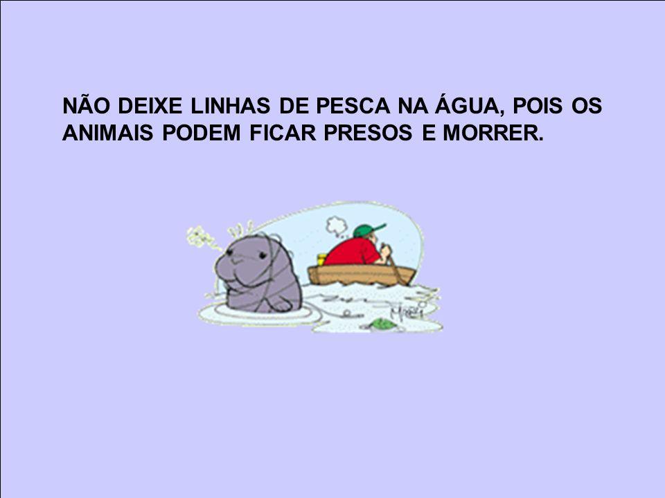 NÃO DEIXE LINHAS DE PESCA NA ÁGUA, POIS OS ANIMAIS PODEM FICAR PRESOS E MORRER.