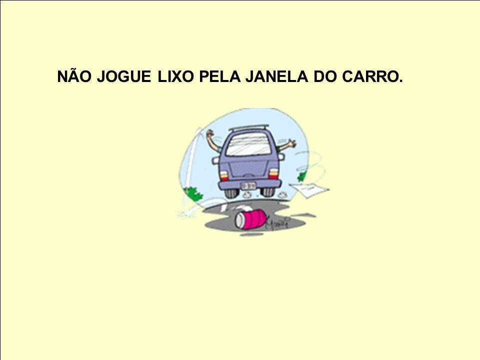 NÃO JOGUE LIXO PELA JANELA DO CARRO.